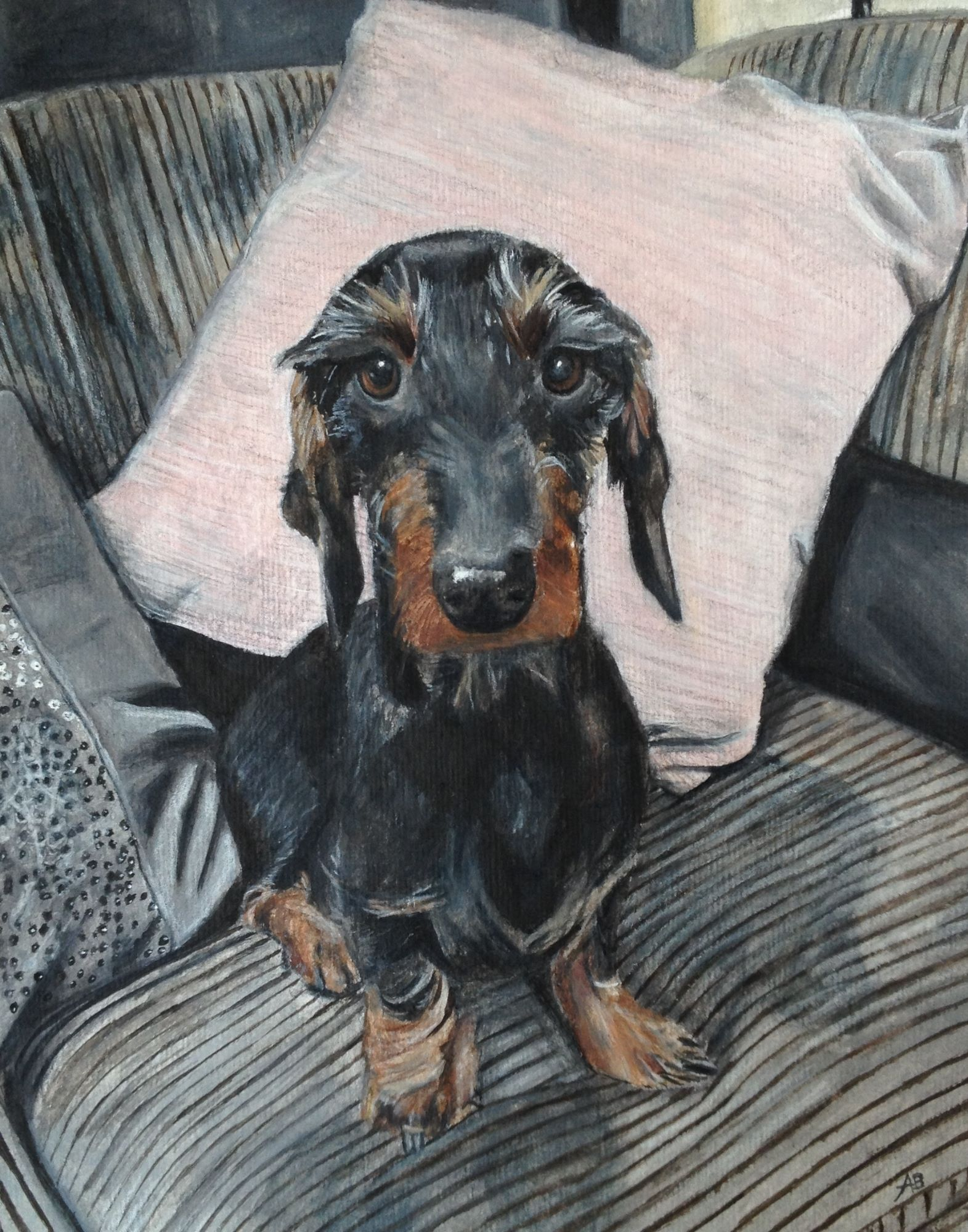 Ross the Daschund