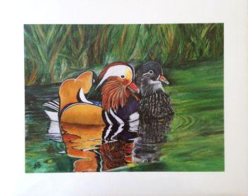 'Mandarin Ducks' Giclée Fine Art Print