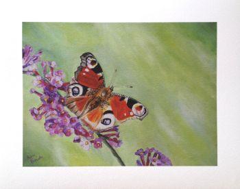 'Wonder' Giclée Fine Art Print