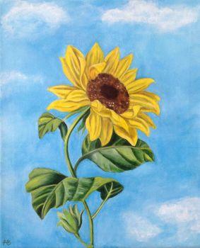 Sunflower Heights