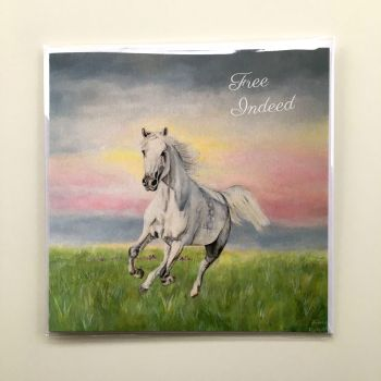 White Horse Greeting Card