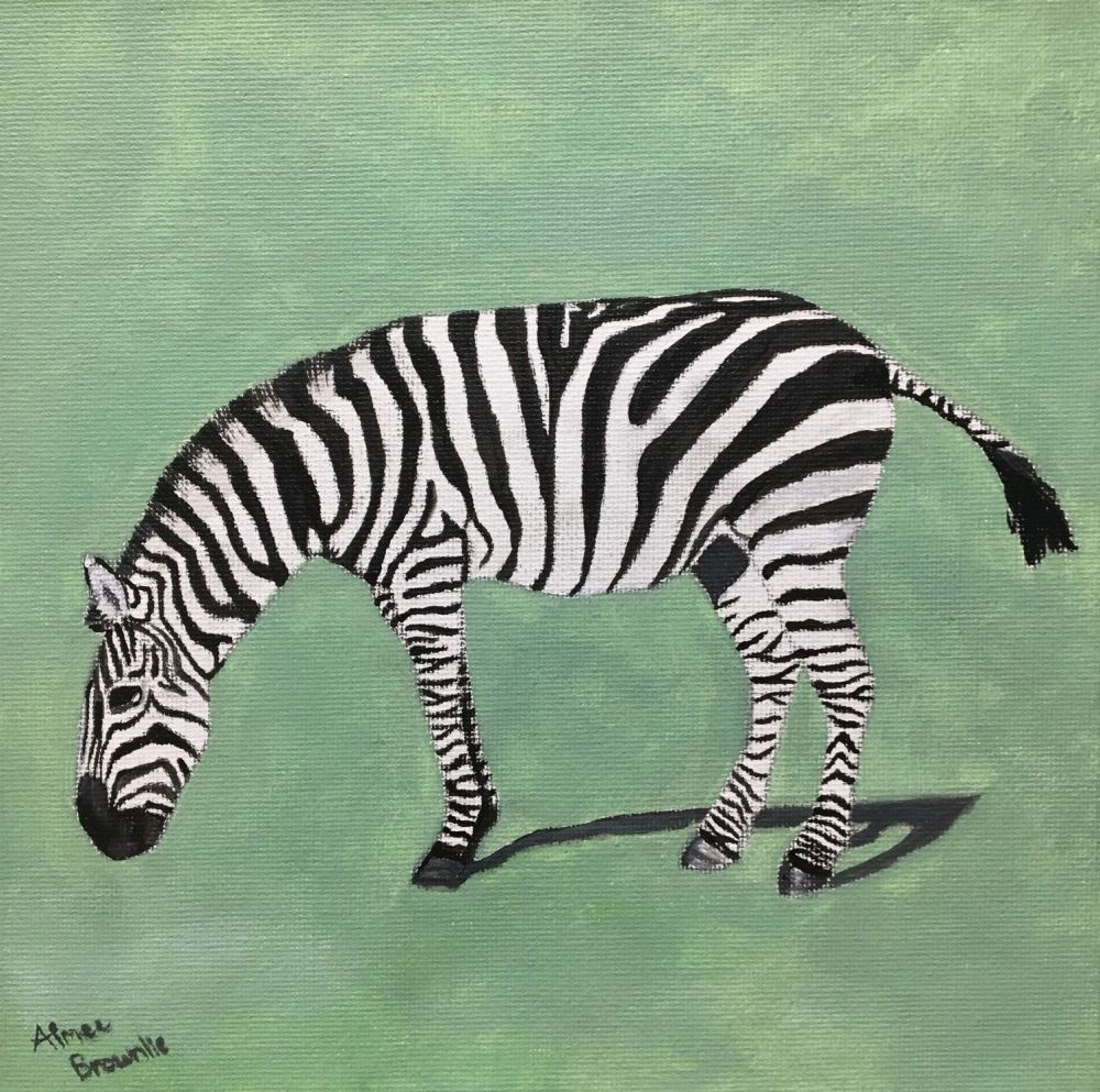 Striped Stallion