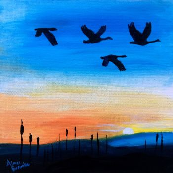 Graceful Flight