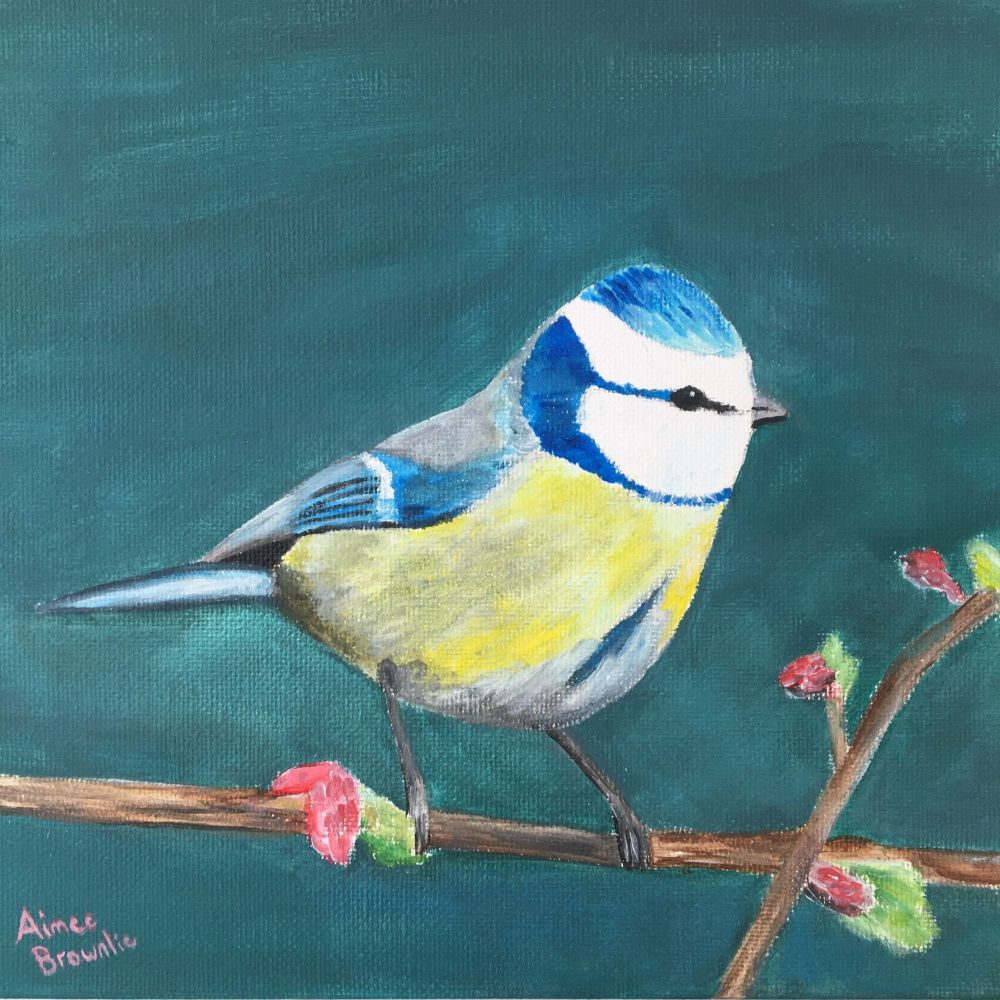 Sweet Songbird