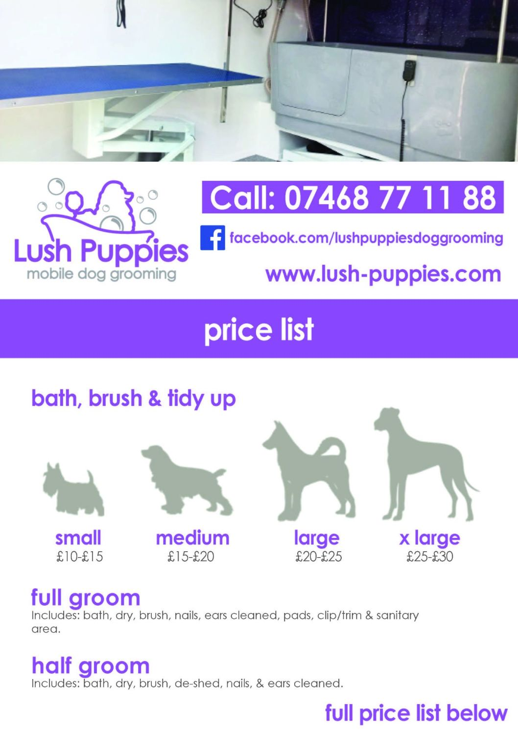 Dog Grooming Price List Design & 3 Copies Printed and Laminated