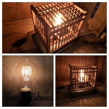 Bird Cage lamp No 1