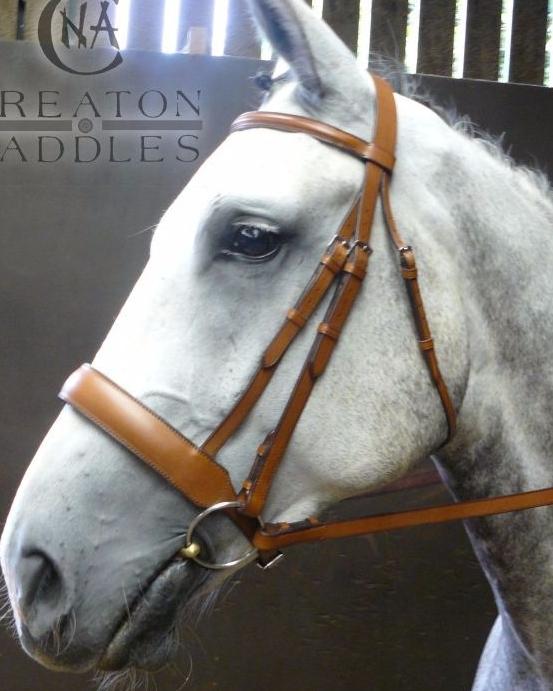 horse-bridle