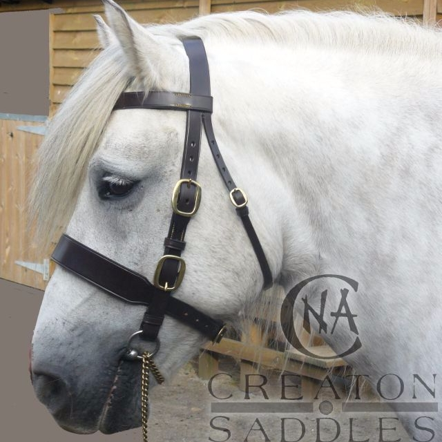 in-hand-bridle