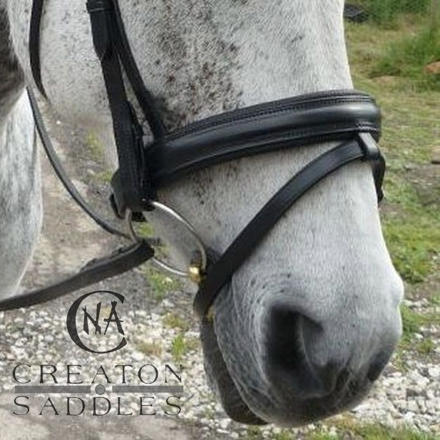 bridle-with-flash-noseband