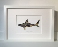 Shark (medium frame 23x32cm)