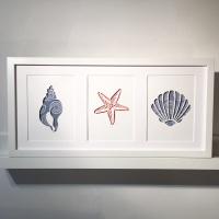 Sea Shells (large frame 32x52cm)