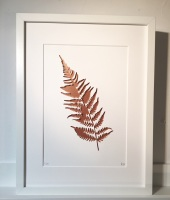 Fern - copper (extra large frame 52x42cm)