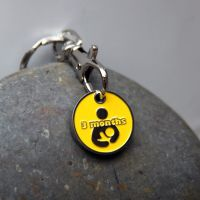 3 month Token Keyring