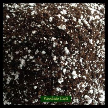 Cactus/Succulent Compost 5Lt