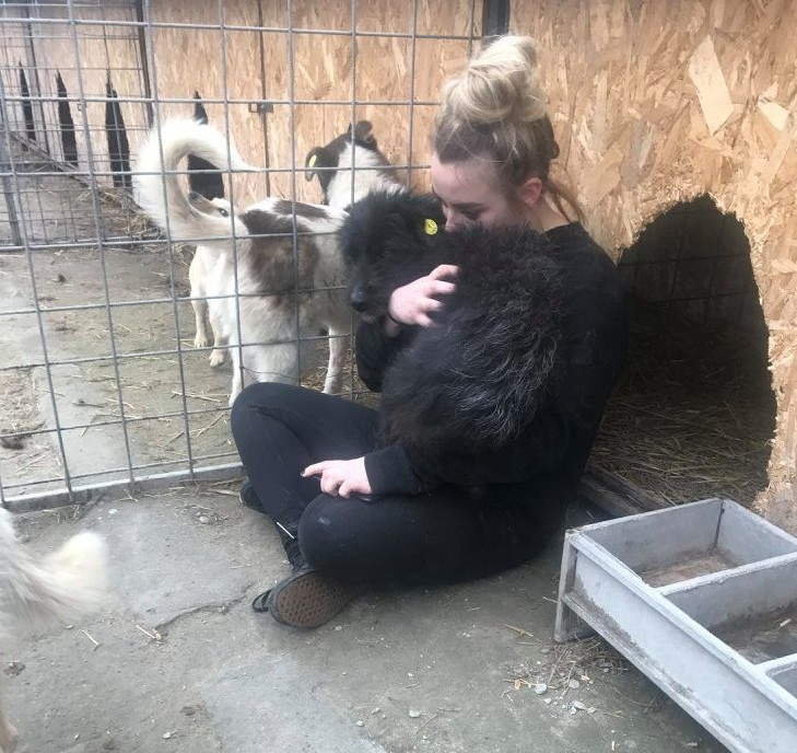 Woman is sat cuddling a shelter dog.