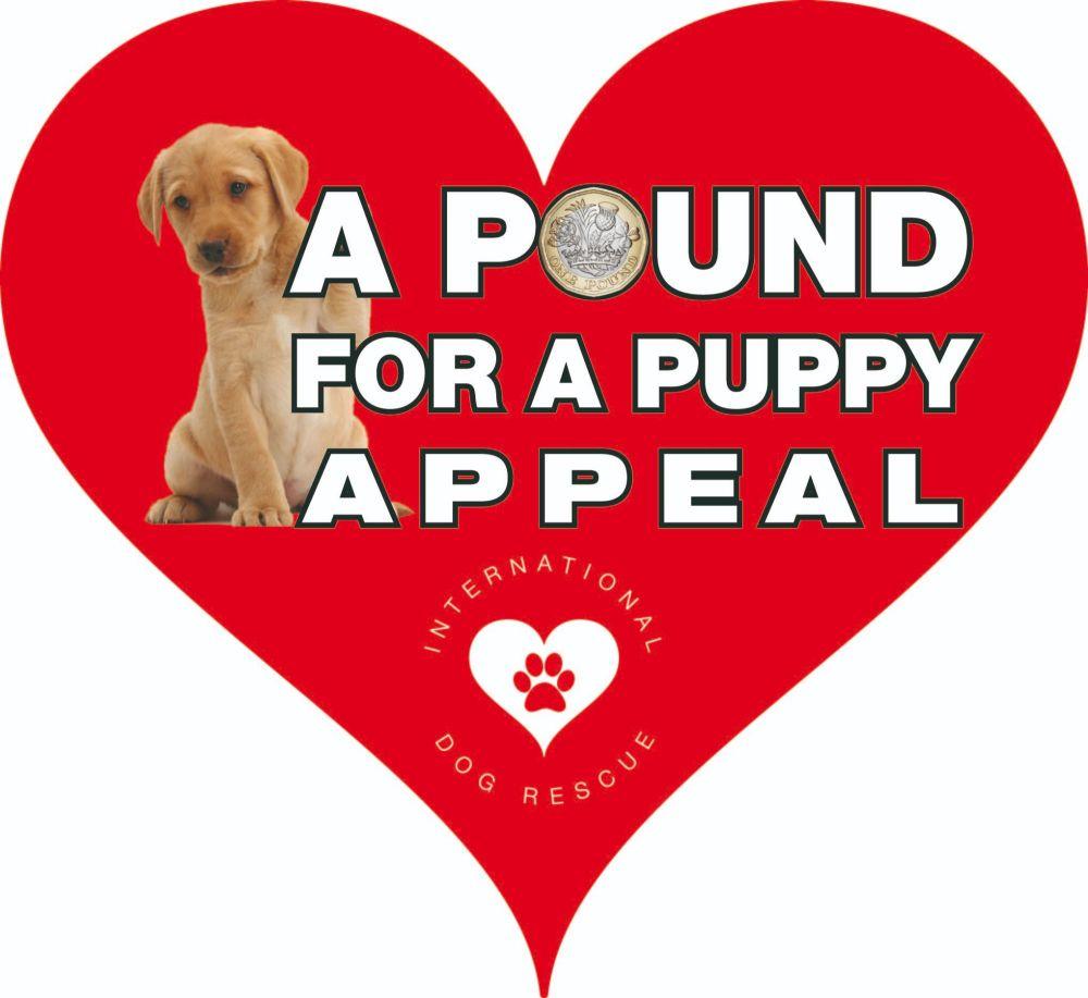 puppy campaign