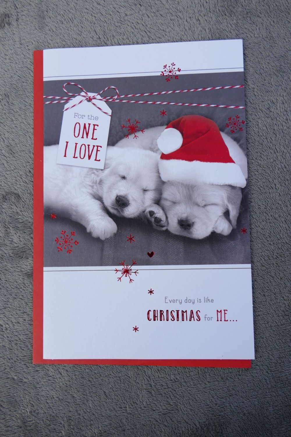 Christmas Card - Puppy