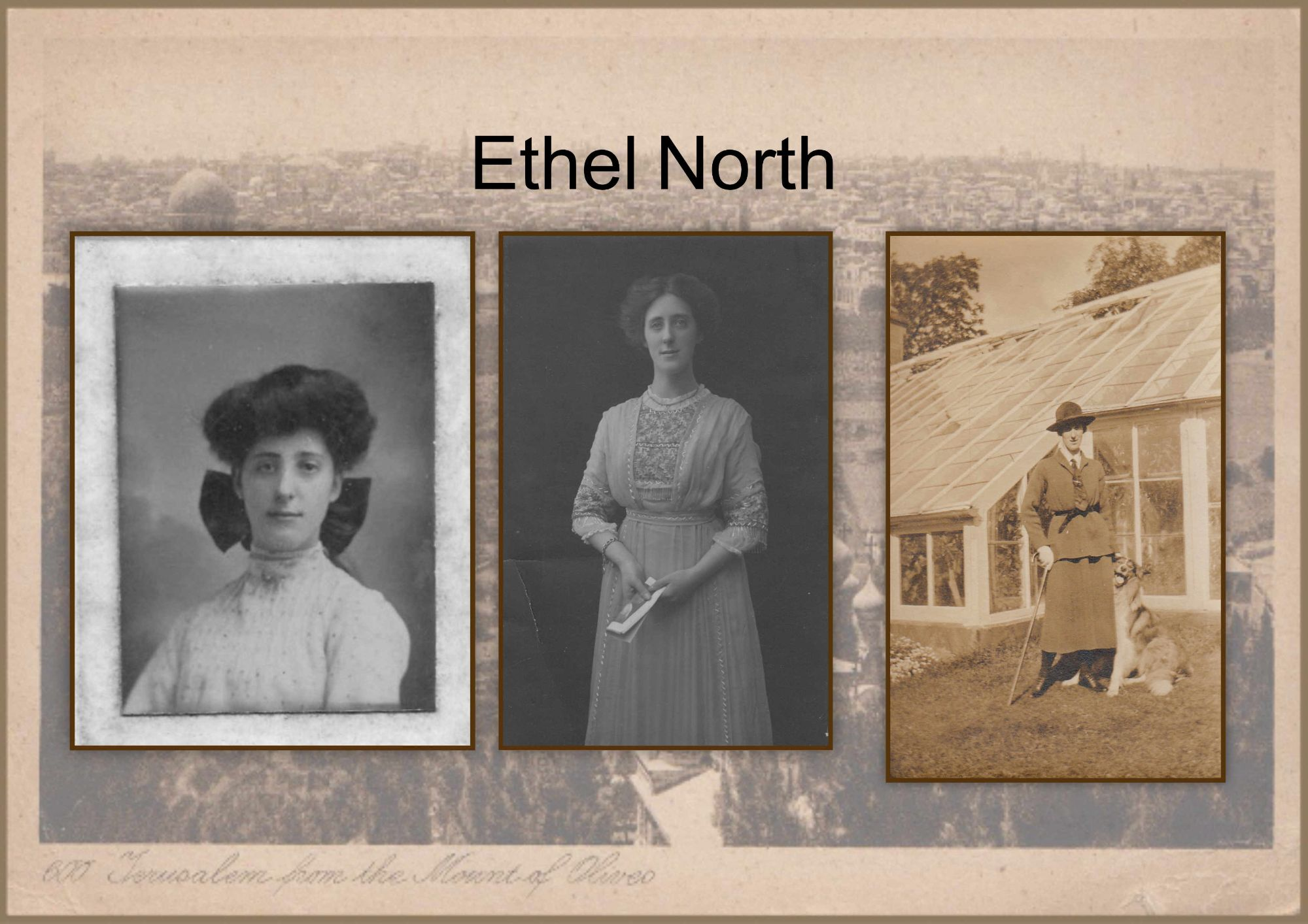 ethel north.jpg