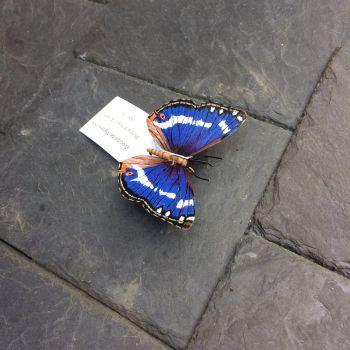 Steel purple emperor butterfly sculpture