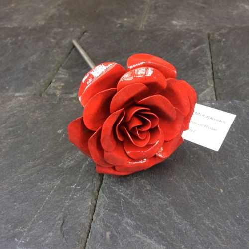 steel rose in bright red