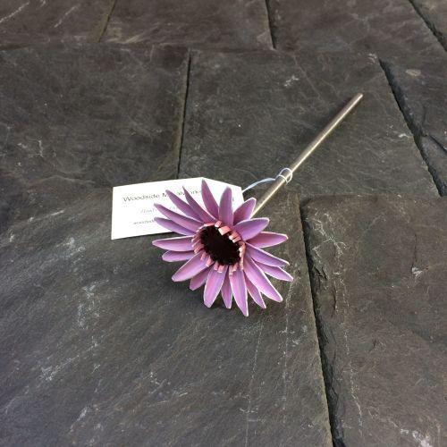 Pink Steel Gerbera Daisy