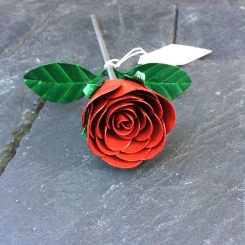 Red valentines rose