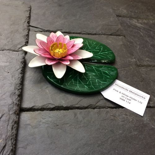 Pink and white metal water lily on a leaf