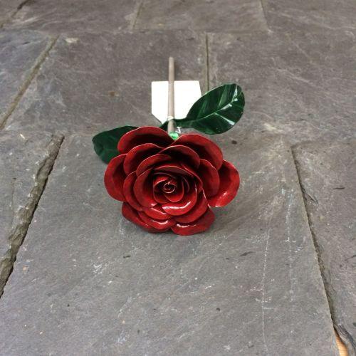 Anniversary steel rose in dark red