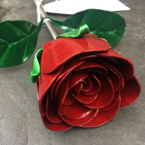 Single valentines rose
