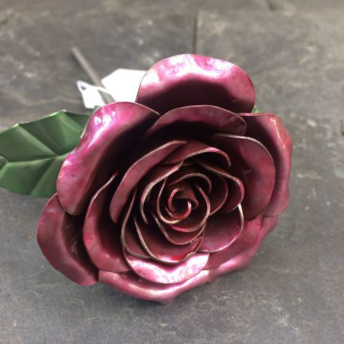 Steel rose flower with a hint of red