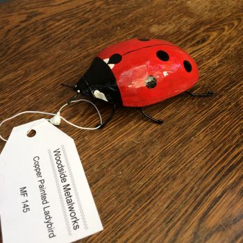 Copper painted ladybird