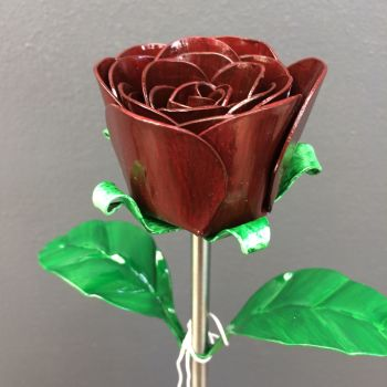 Burgundy steel rose small