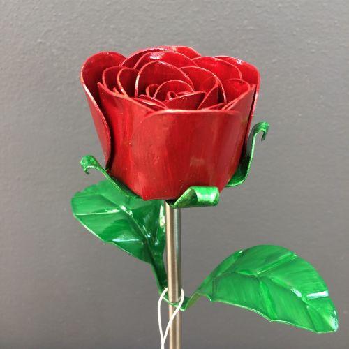 Red steel rose in dark red