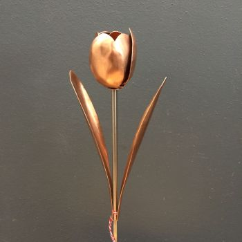 Copper tulip with leaves