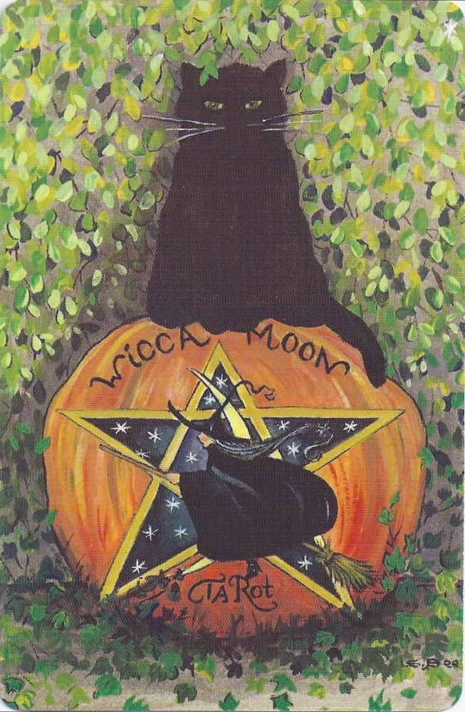 Exclusive Wicca Moon Tarot Cards