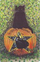 Wicca Moon Tarot Cards & Book Set