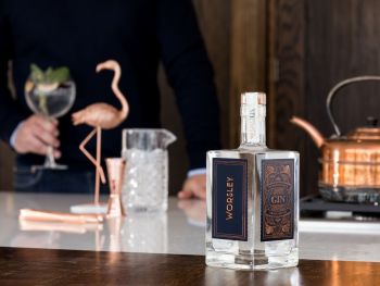 Worsley Gin 50cl - Luxury Handcrafted Gin from Greater Manchester