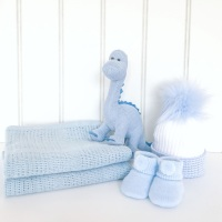 Baby Dino Gift Set - Blue
