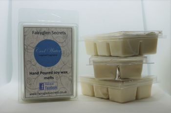 """Cool Water"" Inspired Fragrance  Soy Wax Melts"