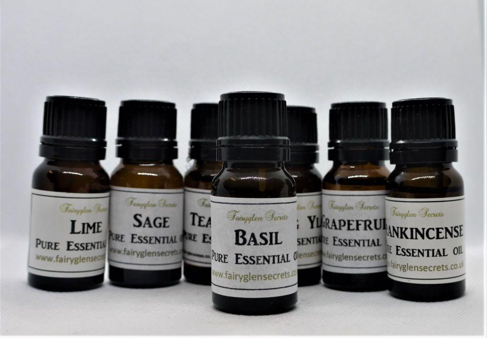10ml Basil pure essential oil