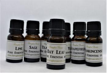 10ml Bay Leaf Pure Essential oil