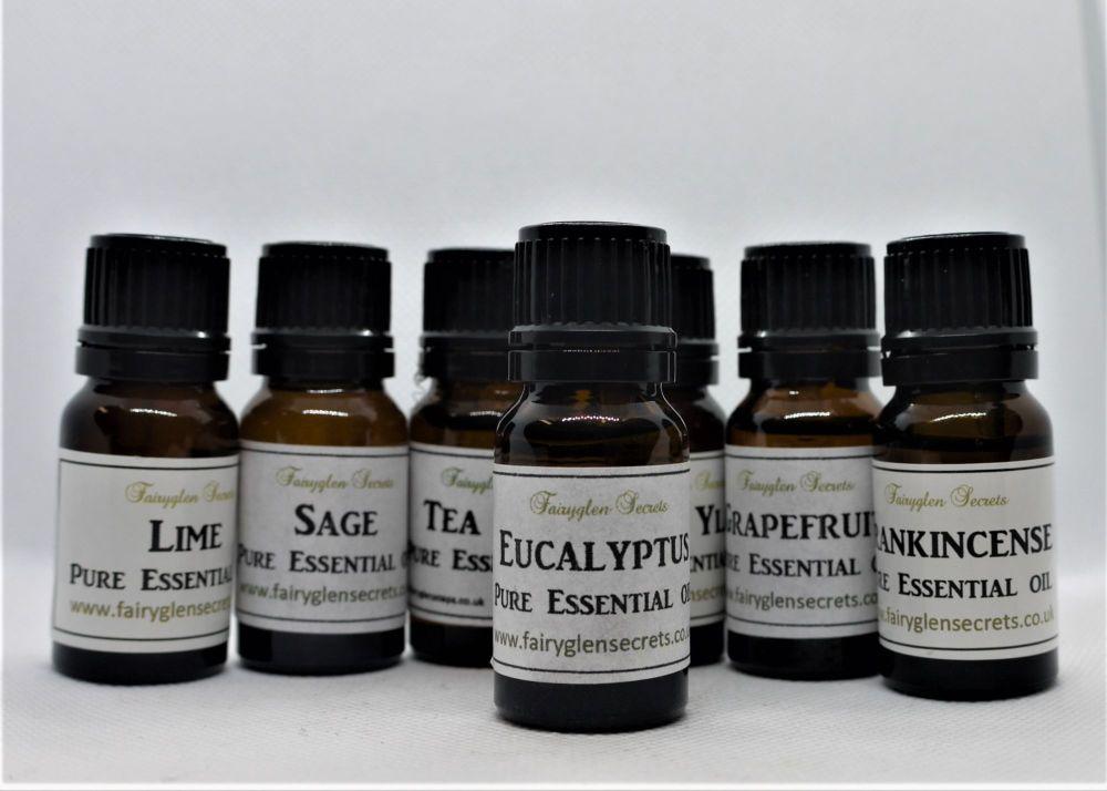 10ml Eucalyptus pure essential oil