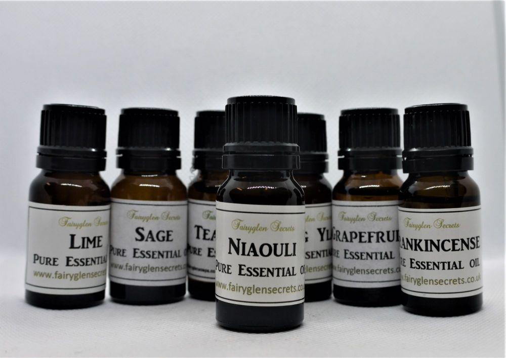 10ml Niaouli Pure Essential Oil