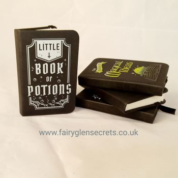 """Mini Notebook """" Little Book of Potions"""""""