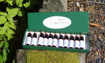 A full set of 15 Tree Moss Essences, plus one box
