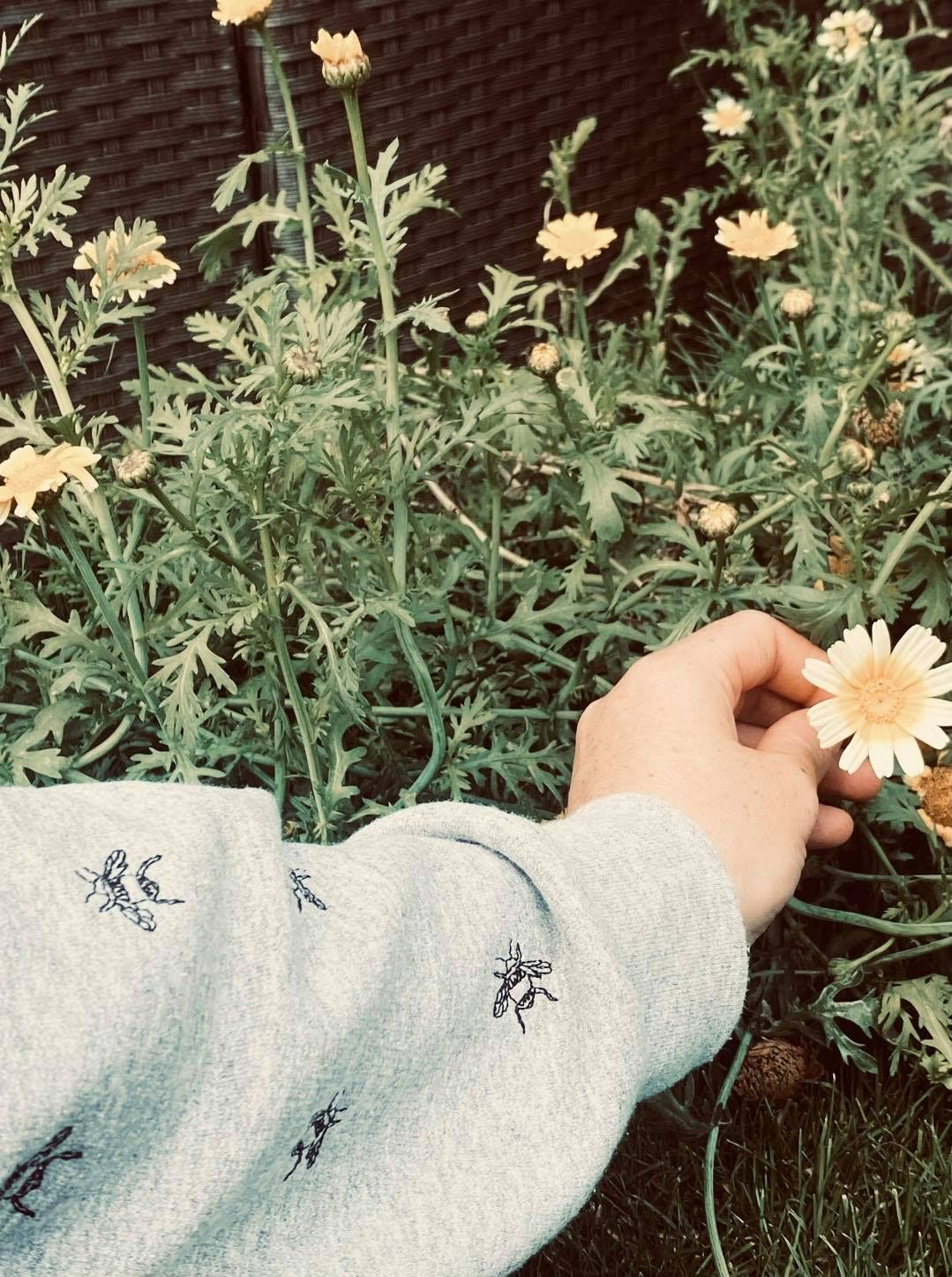 <!-- 001--> Lots of Bees Embroidered Sweatshirt