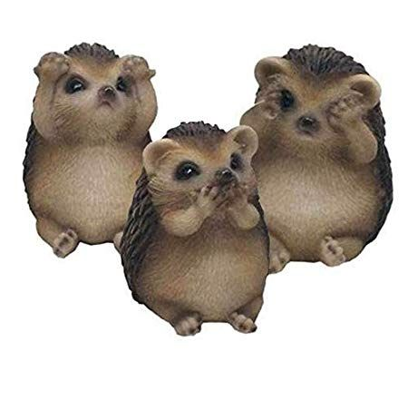 See Speak Hear No evil hedgehogs