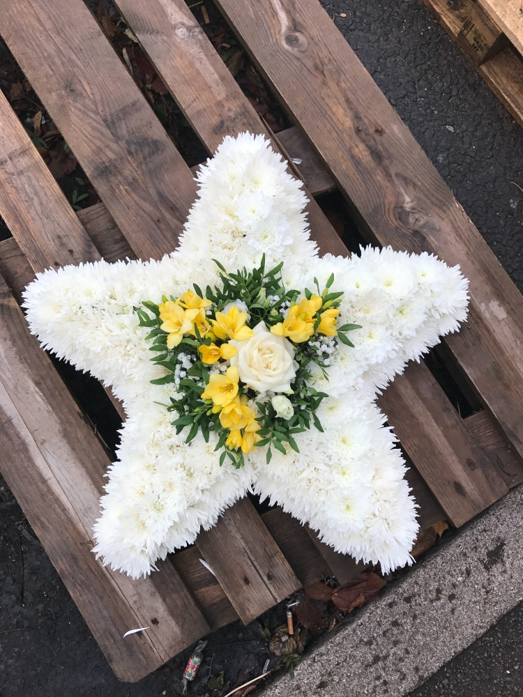 Star Shaped Tribute