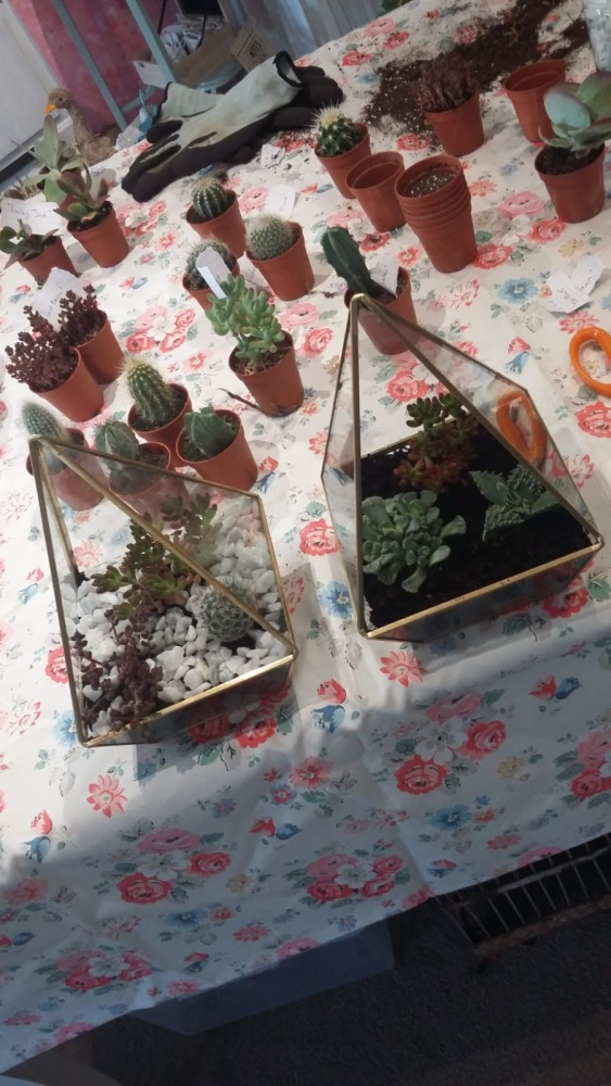Terrarium Workshop - 7th September 2018