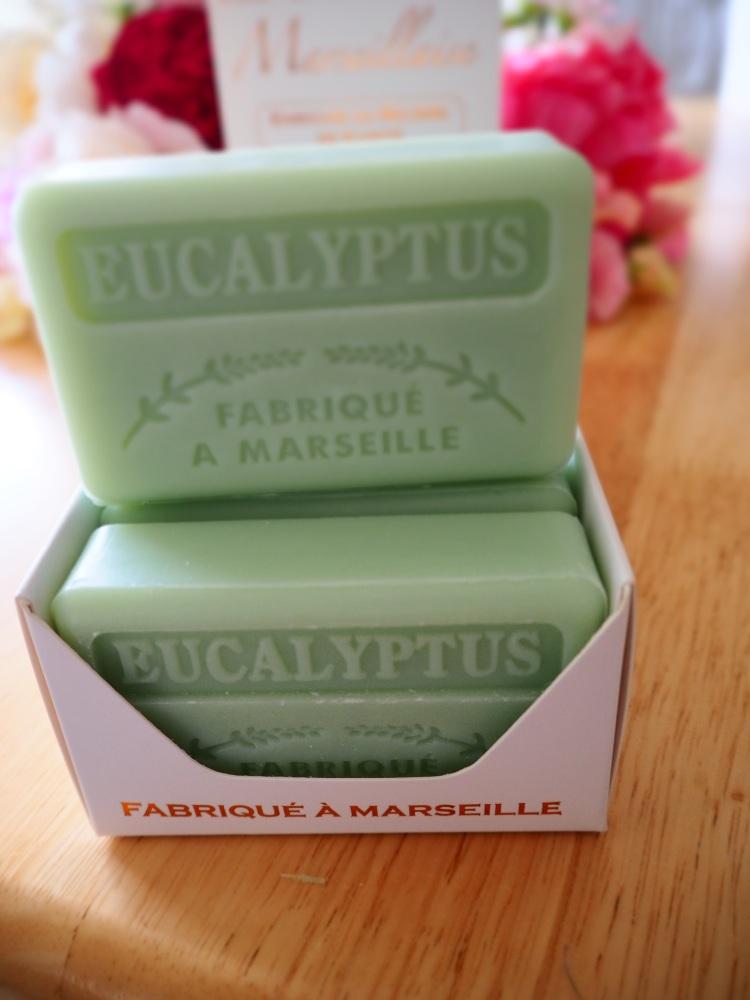 Eucalyptus Savon De Marseille Soap 125g